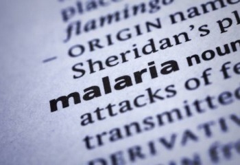 Fighting Malaria on Multiple Fronts